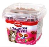 Sanal cat salmon bites cup