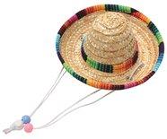 Straw hat sombrero m
