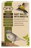 Best for birds vetbollen met insecten
