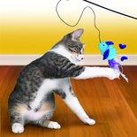 Kong cat teaser feather assorti