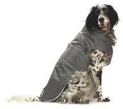 Croci hondenjas regenjas montreal grijs